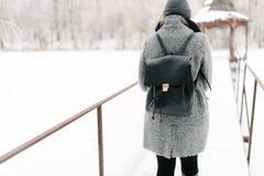 灰色外套的女孩在一座桥梁在冬天 免版税图库摄影