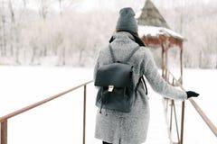 灰色外套的女孩在一座桥梁在冬天 库存图片