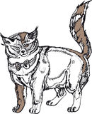 灰色大猫 免版税库存照片