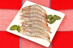 灰色大虾 免版税库存图片