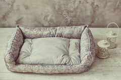 灰色宠物床垫在有闪亮指示的屋子里 库存照片