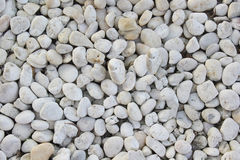 灰色小卵石背景 免版税图库摄影