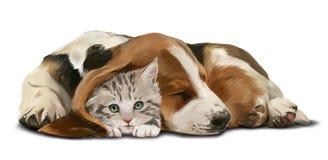 灰色小猫和睡觉达克斯猎犬 免版税库存图片
