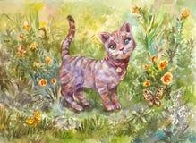 灰色小的猫的水彩例证 图库摄影