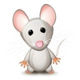灰色小的鼠标 库存照片