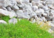 灰色岩石和绿草背景的 库存照片