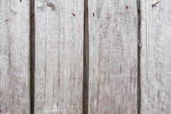灰色木老篱芭板纹理  库存照片