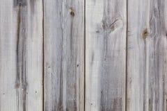 灰色木老篱芭板纹理  免版税库存图片