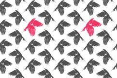 灰色桃红色乌鸦样式 免版税库存照片
