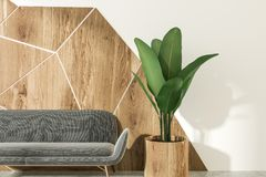 灰色沙发白色和木客厅,正面图 向量例证