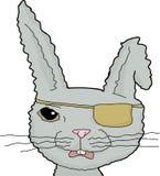灰色海盗兔子 向量例证