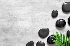 灰色温泉背景、棕榈叶和黑湿石头,顶视图 库存图片