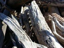 灰色漂流木头 库存照片