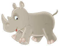 灰色犀牛 免版税库存照片