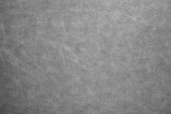 灰色皮革纹理 库存图片