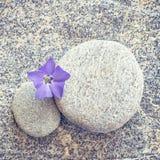 灰色石头和小卵石禅宗背景 库存照片