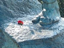 灰色纪念碑的图象与两朵花的 免版税库存图片