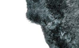 灰色羊皮地毯绵羊毛皮背景纹理 免版税库存图片