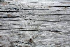灰色老木头 免版税图库摄影