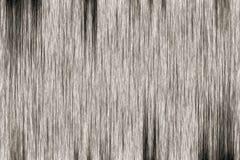 灰色老木纹理 图库摄影