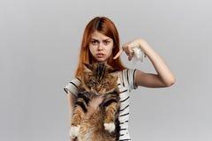 灰色背景的美丽的少妇拿着一只猫和点在它与手指 免版税图库摄影