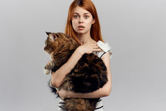 灰色背景的年轻美丽的妇女拿着一只猫,情感 免版税库存照片