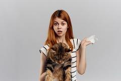 灰色背景的年轻美丽的妇女拿着一只猫,过敏,情感 图库摄影