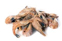 灰色虾 免版税库存照片