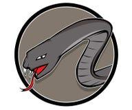 灰色蛇 图库摄影