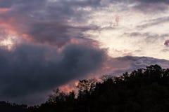 灰色覆盖天空与红灯f的背景和剪影树 免版税库存照片