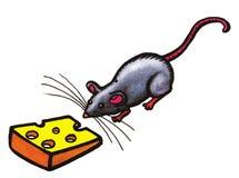 灰色鼠标 库存照片