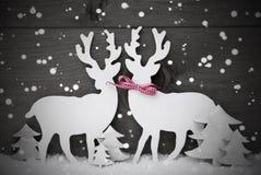 灰色,圣诞节装饰,在爱的驯鹿夫妇,雪花 免版税库存照片