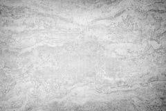 灰色水泥织地不很细背景 库存照片