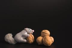 灰鼠和核桃 免版税库存图片