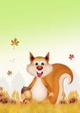 灰鼠在秋天 免版税库存图片