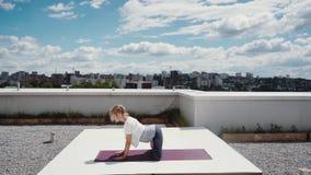 灵活的年轻女人做着在慢动作的复杂舒展的瑜伽锻炼 股票录像