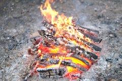 灼烧和被烧焦的木头注册火 库存图片