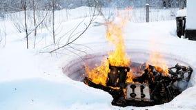 灼烧的事本质上在冬天 夹子 受控火在森林里在冬天 影视素材
