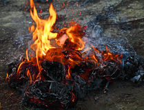 灼烧的垃圾 免版税图库摄影