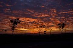 灼烧的天空在草土地 库存图片