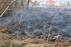 灼烧的干草在春天 库存图片