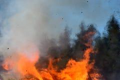 从灼烧的房子的火焰 免版税库存照片