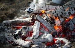 灼烧的日志煤炭特写镜头 免版税图库摄影