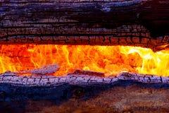 灼烧的日志美好的巨大篝火结构和火焰  库存照片