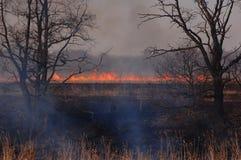 灼烧的木头在莫斯科地区 免版税库存照片