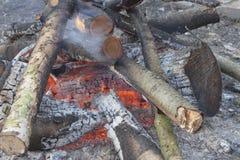 灼烧的木头,灼烧的阵营火 免版税库存照片