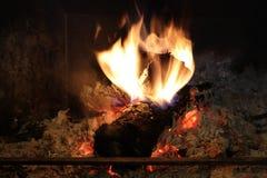 灼烧的树干 库存照片