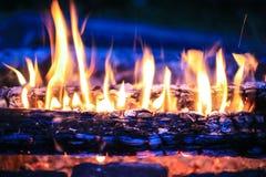 灼烧的桦树木柴 免版税库存图片