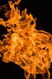 灼烧的气体火焰  库存照片