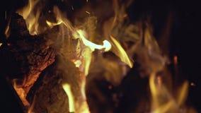 灼烧的火晚上 股票视频
